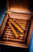 cigarrer i humidor foto