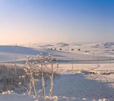 lantligt landskap vinter. mellan apulien och basilicata. soluppgång: snöig sluttning. -Italien- foto
