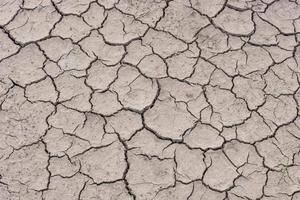 spricka jord på torr säsong foto