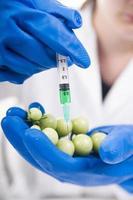 genetiskt modifierad foto