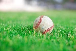 baseboll på grönt gräs foto