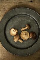 färska shiitake-svampar i humörig naturlig ljusinställning med vin foto