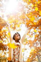 fallande löv 2 foto