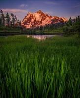 högt gräs växer framför sjön och berget foto