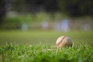 använt baseboll på färskt grönt gräs foto