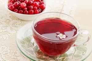 färsk drink tranbär foto
