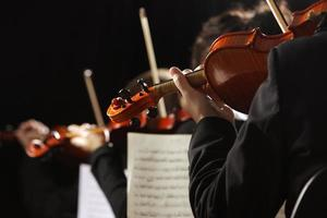 närbild av violinister på konsert foto