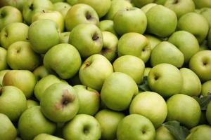 gröna äpplen foto