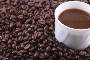 kaffebönor på vit bakgrund
