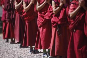 unga tibetanska munkar foto