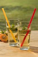 hälsosam kall drink foto