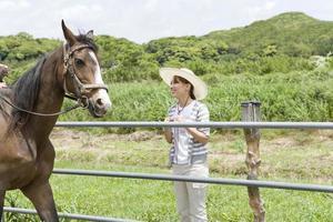 kvinna tittar på häst foto