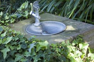dricka fontän i parken foto