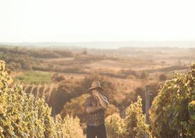 vingårdsägare foto