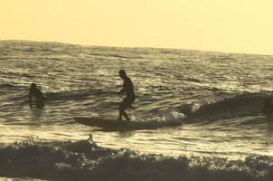 siluett surfer foto
