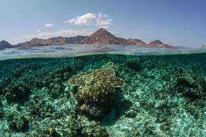 korallrev och öar i Indonesien foto