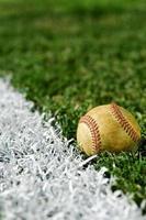gammal baseball längs foul line foto