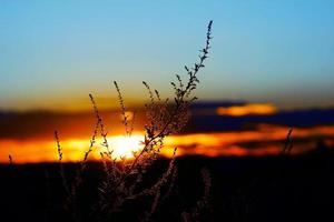 surrealistiska skymning färgglada, dramatiska färgglada solnedgång tillbaka upplyst foto