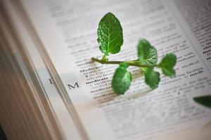 växtmedicinsk utbildning foto
