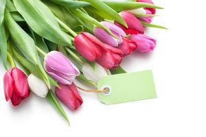 färska tulpaner och tagg med kopieringsutrymme foto