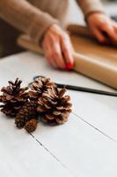 kottar för dekoration gåvor med kopia utrymme foto