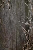 gammal träbakgrund, rustik träyta med kopieringsutrymme foto