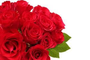 bukett med röda rosor med gröna blad och kopia utrymme foto