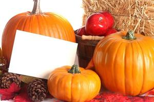 hösten skörd scen med kopia utrymme foto