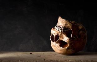 mänsklig skalle foto