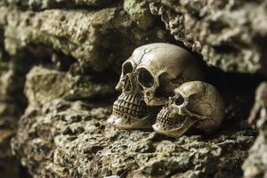 skalle eller skelett av mänskligt fotografi foto
