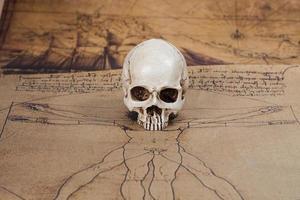 mänsklig skalle på gammal kartbakgrund foto