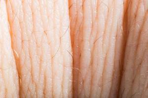 närbild mänsklig hud. makroepidermis foto