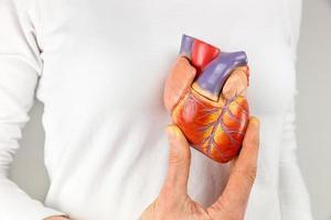 kvinnlig hand som håller hjärta modell framför bröstet foto