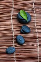stenar och grönt blad foto