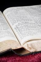 läser bibeln foto