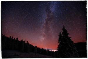 magiskt träd i stjärnklar vinternatt - vintage effekt foto