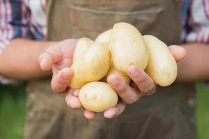 bonde som säljer ekologiska grönsaker på marknaden