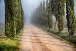 toskanska landsvägen foto