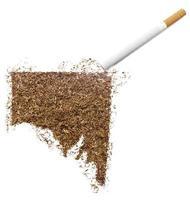 cigarett och tobak formad som södra Australien (serier) foto