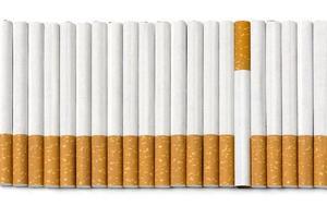 rad filtercigaretter, en är upp och ner, på vitt foto