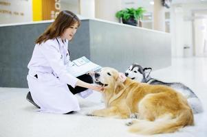ung veterinär på sjukhuset foto