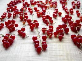 röda vinbär mönster foto