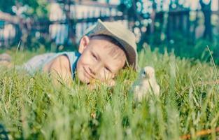 ung pojke som ligger i långt gräs med fuzzy chick foto