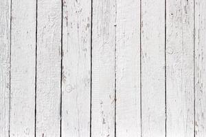 vit trä textur med naturliga mönster bakgrund foto