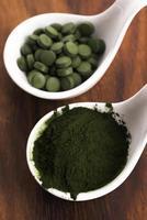 grön klorella foto