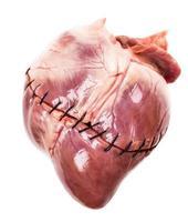 hjärta med sutur närbild foto