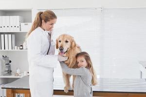 glad veterinär som kontrollerar en labrador foto