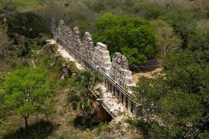 ruiner i djungeln foto
