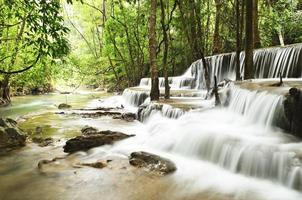 vattenfall i djup djungel foto