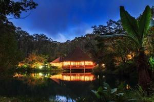 djungel lodge natt foto